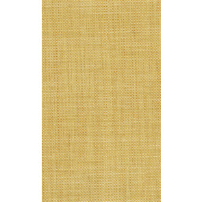 Osborne & Little - Papilio Plain 2 F5760-10