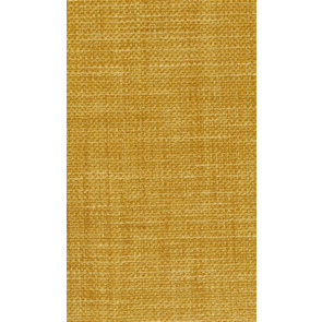 Osborne & Little - Papilio Plain 2 F5760-11