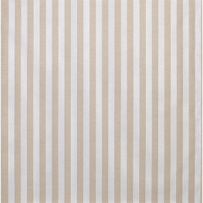 Osborne & Little - Breeze Stripe F6882-03