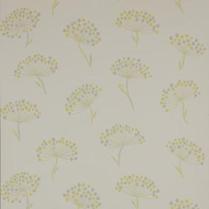 Jane Churchill - Alba - Alba - J116W-06 Yellow/Grey