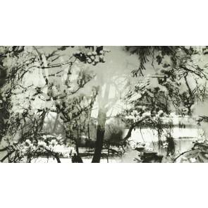 Jean Paul Gaultier - Brume - 3307-01 Ecru/Noir
