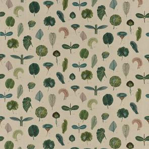 John Derian - A Leaf Study - FJD6017/01 Linen