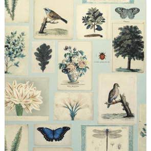 John Derian - Flora and Fauna - PJD6001/02 Cloud Blue