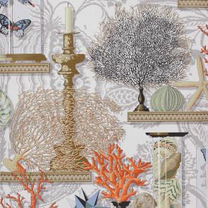 Manuel Canovas - Vol 5 - La Cabinet De Curiosites Corail 3072/01