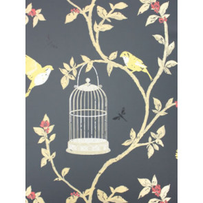 Nina Campbell - Birdcage Walk - Birdcage Walk NCW3770-05