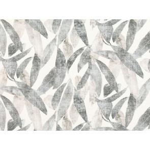 Romo - Arboretum - 7847/03 Eucalyptus