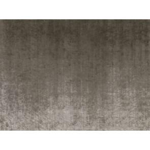 Zinc - Penthouse-Plain - Platinum Z498/02